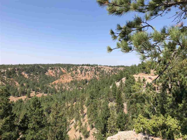 TBD Red Canyon Road, Hot Springs, SD 57747 (MLS #59567) :: Christians Team Real Estate, Inc.
