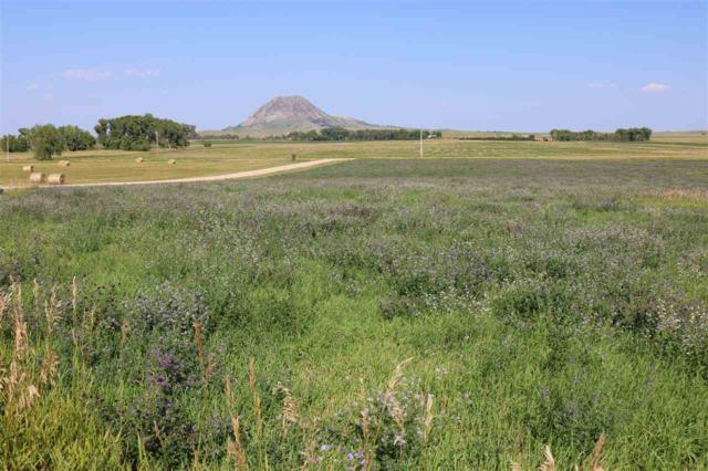 12695 Rifle Ridge Road, Sturgis, SD 57785 (MLS #59587) :: Christians Team Real Estate, Inc.