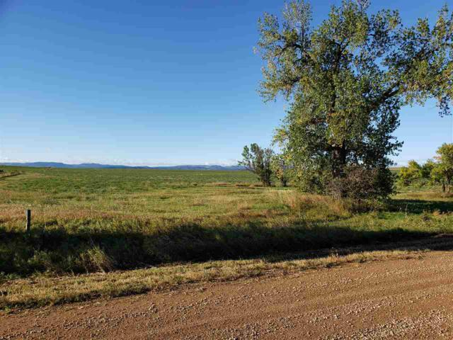 Avalanch Road, Sturgis, SD 57785 (MLS #59630) :: Christians Team Real Estate, Inc.