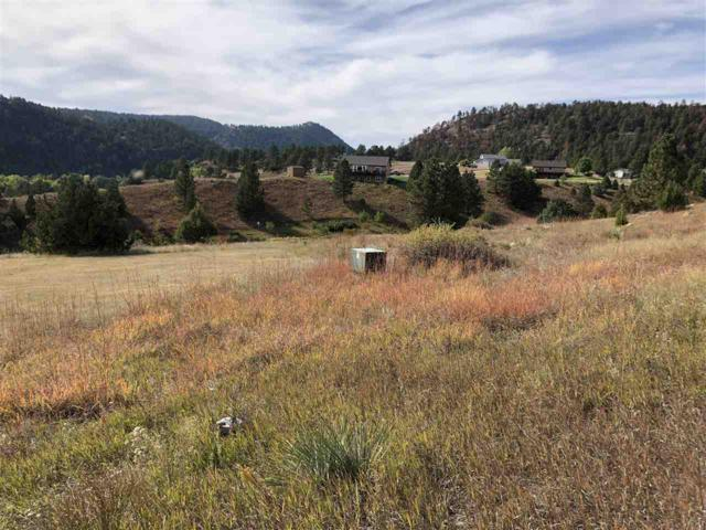 Lot 33 Todd Drive, Hot Springs, SD 57747 (MLS #59682) :: Christians Team Real Estate, Inc.