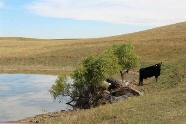 TBD Nine Mile Road, Sturgis, SD 57785 (MLS #59741) :: Christians Team Real Estate, Inc.
