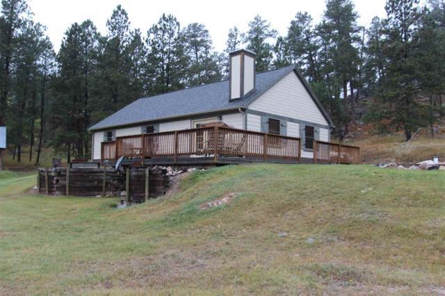 25781 Sidney Trail, Custer, SD 57730 (MLS #59756) :: Christians Team Real Estate, Inc.