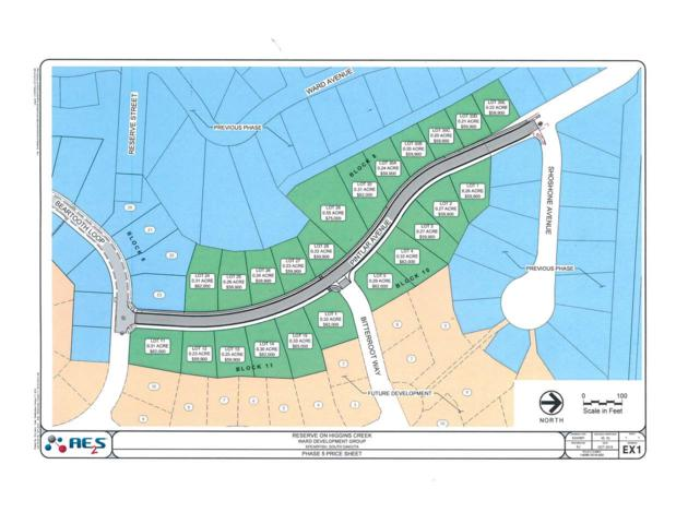 Lot 1, Block 11 Pintlar Avenue, Spearfish, SD 57783 (MLS #59788) :: Christians Team Real Estate, Inc.