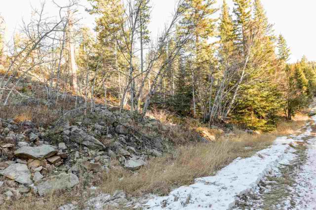 Lot 34 Antelope Trail, Lead, SD 57754 (MLS #59823) :: Christians Team Real Estate, Inc.