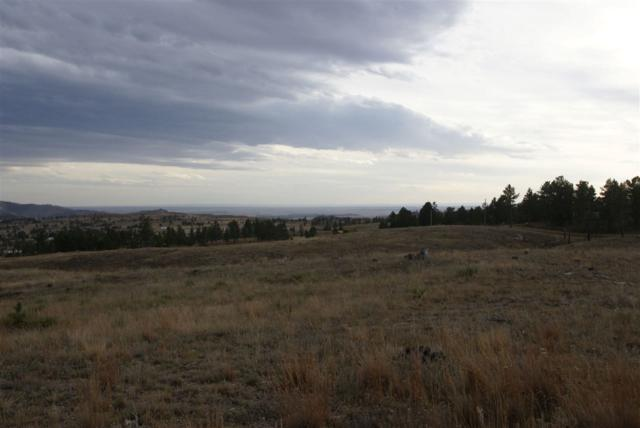 12499 Pine Shadows Road, Hot Springs, SD 57747 (MLS #59904) :: VIP Properties