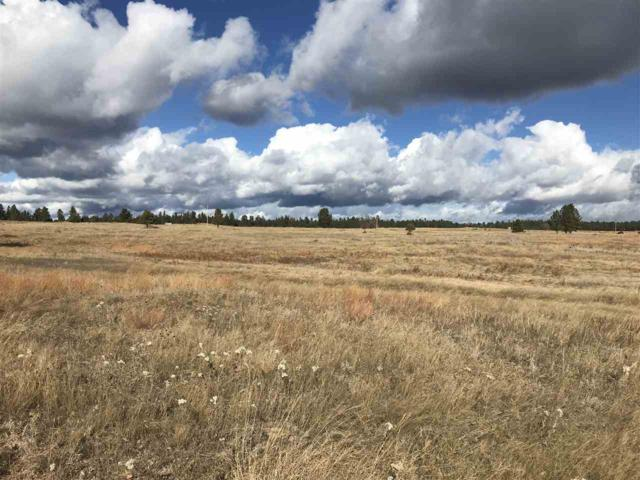 Lot 7 Custer Highlands, Custer, SD 57730 (MLS #59907) :: Christians Team Real Estate, Inc.