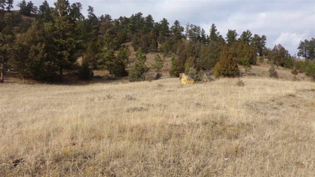 Inyan Kara Creek Road, Sundance, WY 82720 (MLS #59934) :: Christians Team Real Estate, Inc.