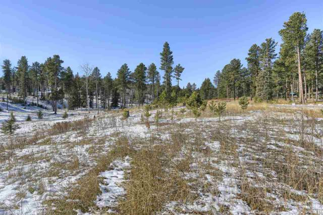 11141 Bogey Circle, Lead, SD 57754 (MLS #59947) :: Christians Team Real Estate, Inc.