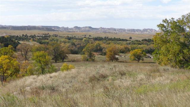 23270 Pass Creek Road, Kadoka, SD 57543 (MLS #60004) :: Dupont Real Estate Inc.