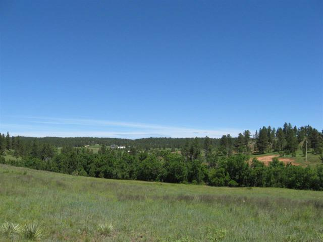 Lot 6 Red Dirt Road, Hot Springs, SD 57747 (MLS #60027) :: Christians Team Real Estate, Inc.