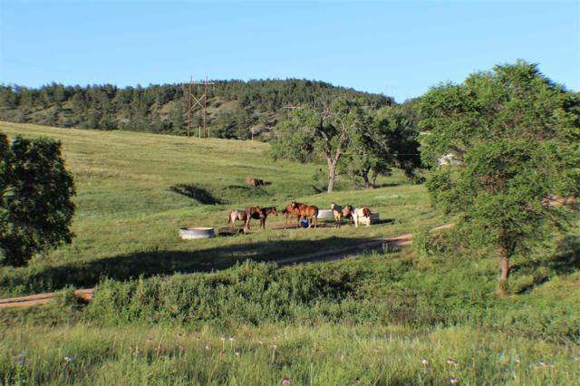 Lot 7 Red Dirt Road, Hot Springs, SD 57747 (MLS #60028) :: Christians Team Real Estate, Inc.