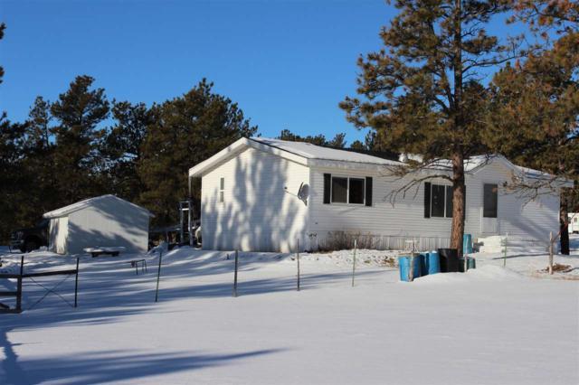 25564 Old Cabin Rd, Edgemont, SD 57735 (MLS #60123) :: Christians Team Real Estate, Inc.