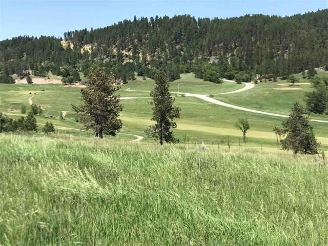 Lot 1 Covered Wagon, Sturgis, SD 57785 (MLS #60266) :: VIP Properties