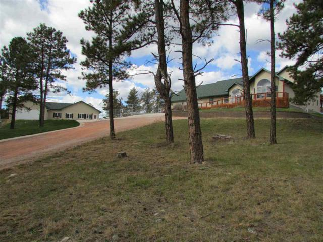 24623 Bridle Rein Drive, Hermosa, SD 57744 (MLS #60293) :: Christians Team Real Estate, Inc.
