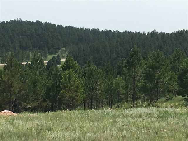 26686 Maverick Way, Custer, SD 57730 (MLS #60299) :: Christians Team Real Estate, Inc.
