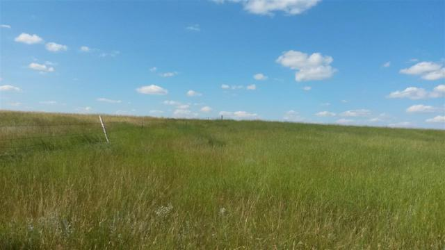 TBD Date Road, Prairie City, SD 57649 (MLS #60327) :: Dupont Real Estate Inc.