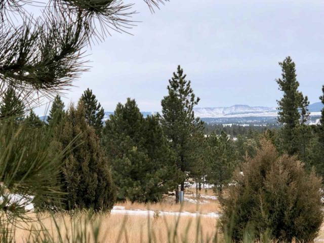TBD Red Canyon Road, Custer, SD 57730 (MLS #60332) :: Christians Team Real Estate, Inc.