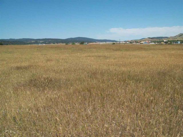 Sturgis Rd Roads, Sturgis, SD 57769 (MLS #60390) :: Dupont Real Estate Inc.