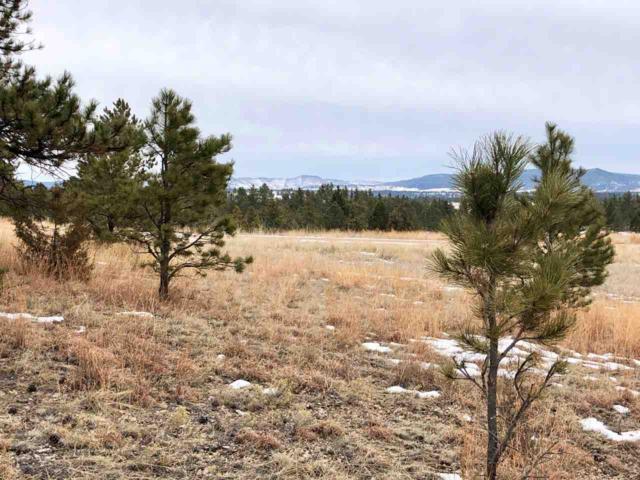 TBD Elk Run Road, Pringle, SD 57730 (MLS #60438) :: Christians Team Real Estate, Inc.