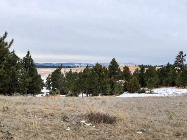 26675 Stage Stop Road, Pringle, SD 57747 (MLS #60439) :: Christians Team Real Estate, Inc.