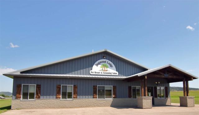 955 Pine View Drive, Sturgis, SD 57785 (MLS #60458) :: Christians Team Real Estate, Inc.