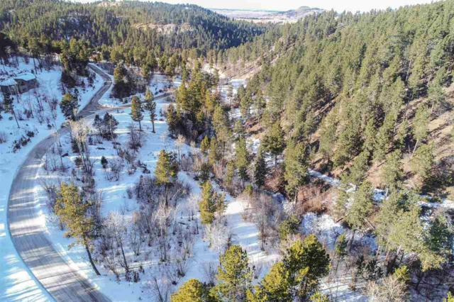 Lot 20A Bald Eagle Rd, Spearfish, SD 57783 (MLS #60466) :: Christians Team Real Estate, Inc.