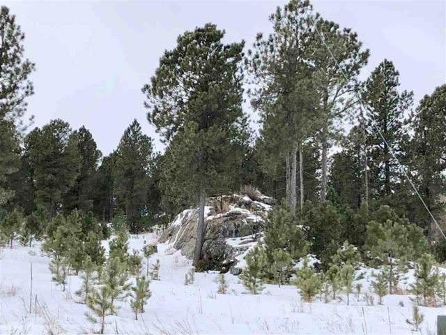 Lot 11 Cedar Berry Trail, Custer, SD 57730 (MLS #60494) :: Christians Team Real Estate, Inc.