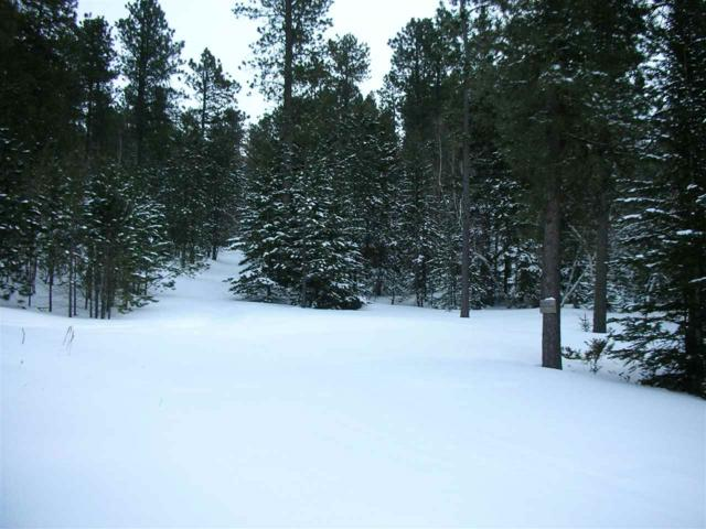 LOT 1 & 2 Cat Court, Lead, SD 57754 (MLS #60599) :: Dupont Real Estate Inc.