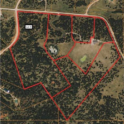 Lot 4 Timber Ridge Road, Hermosa, SD 57744 (MLS #60615) :: Christians Team Real Estate, Inc.
