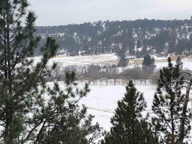 Address Not Published, Hermosa, SD 57744 (MLS #60647) :: VIP Properties