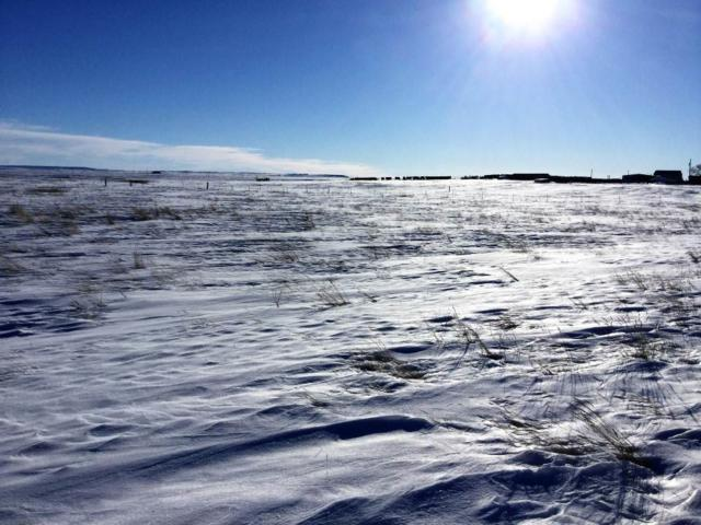 Tract A Lot 1 Hwy 20, Buffalo, SD 57720 (MLS #60722) :: Christians Team Real Estate, Inc.