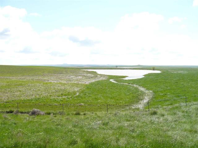 16644 Sd Hwy 79, Newell, SD 57760 (MLS #60727) :: Christians Team Real Estate, Inc.