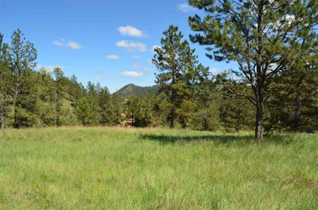 TBD Cardinal Drive, Hot Springs, SD 57747 (MLS #60750) :: Christians Team Real Estate, Inc.