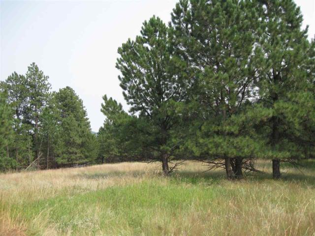 116 Trails End, Custer, SD 57730 (MLS #60759) :: VIP Properties