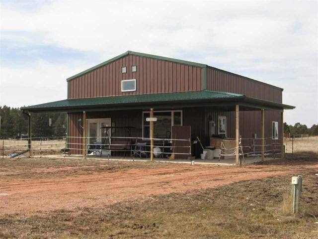 26849 Sd Highway 89, Hot Springs, SD 57747 (MLS #60833) :: Christians Team Real Estate, Inc.