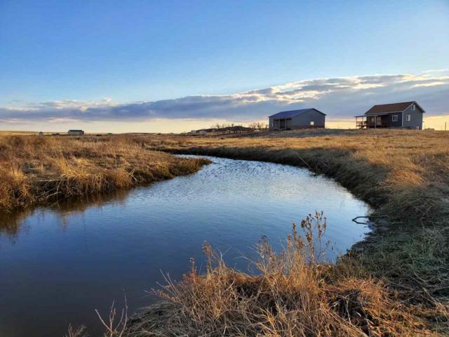 28420 Gobbler Lane, Smithwick, SD 57782 (MLS #60961) :: VIP Properties