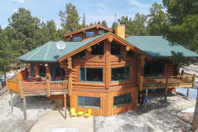 12193 Lucky Strike Road, NEMO, SD 57759 (MLS #60980) :: Christians Team Real Estate, Inc.