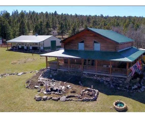 20415 Canyon Springs Lane, Whitewood, SD 57793 (MLS #60982) :: VIP Properties