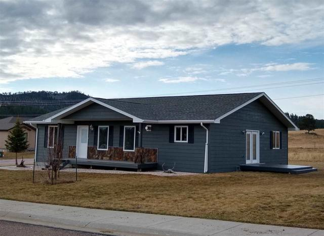 409 Agate Ln, Custer, SD 57730 (MLS #61017) :: VIP Properties