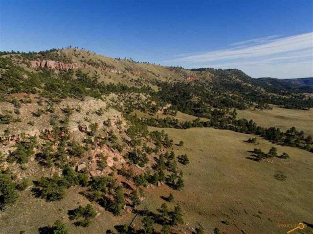 12784 Sheps Canyon Road, Hot Springs, Sd, Usa, Hot Springs, SD 57747 (MLS #61053) :: VIP Properties