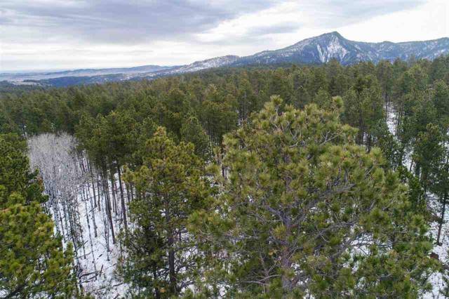 2 Aster Road, Spearfish, SD 57783 (MLS #61055) :: Dupont Real Estate Inc.