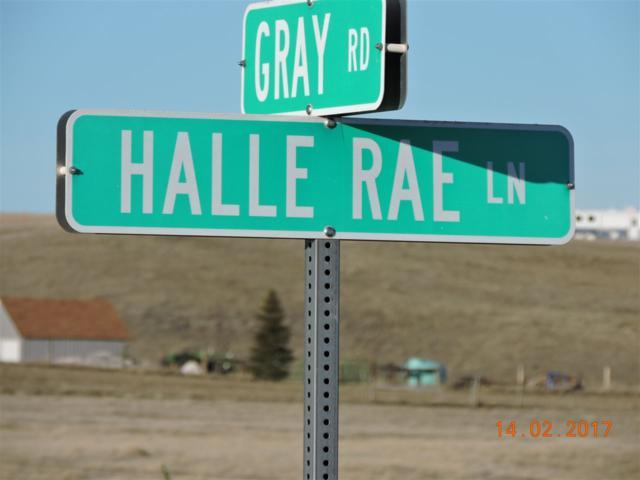 10784 Halle Rae Lane, Belle Fourche, SD 57717 (MLS #61124) :: Christians Team Real Estate, Inc.
