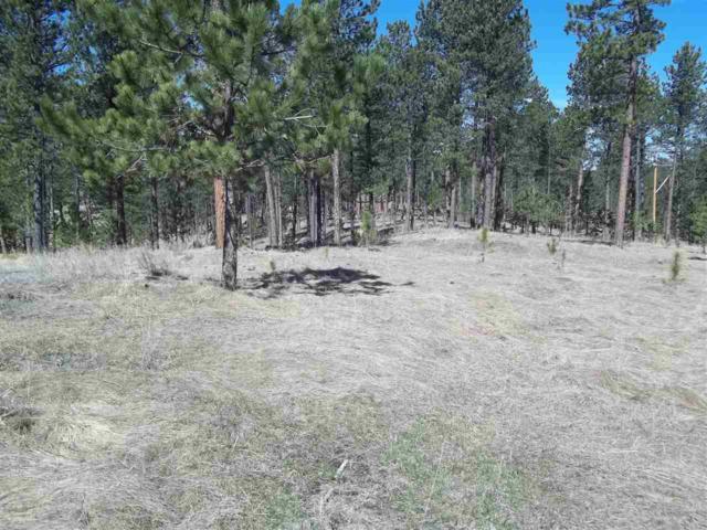 TBD Star Ridge Road, Custer, SD 57730 (MLS #61125) :: Christians Team Real Estate, Inc.