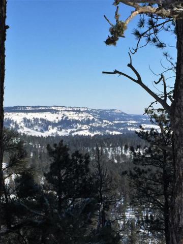 tbd Deer Creek Rd, Hulett, Wyoming 82720, Hulett, WY 82720 (MLS #61148) :: Dupont Real Estate Inc.