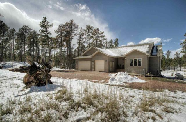 24006 Iron Horse Ct., Hill City, SD 57745 (MLS #61210) :: Dupont Real Estate Inc.