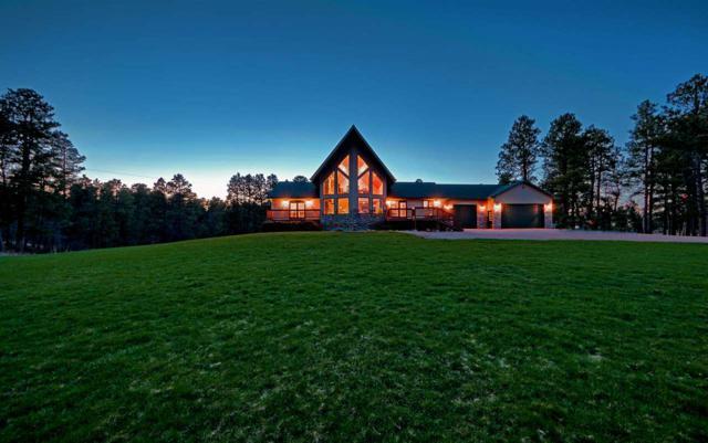 20819 Radio Tower Road, Sturgis, SD 57785 (MLS #61221) :: Christians Team Real Estate, Inc.