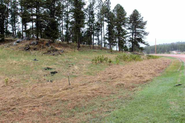 Lot 28 Wittrock Road, Custer, SD 57730 (MLS #61236) :: Dupont Real Estate Inc.