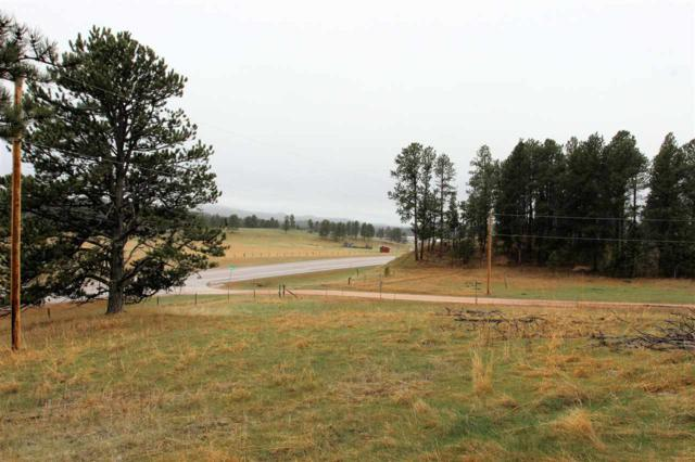 Lot 30R Wittrock, Custer, SD 57730 (MLS #61237) :: Christians Team Real Estate, Inc.