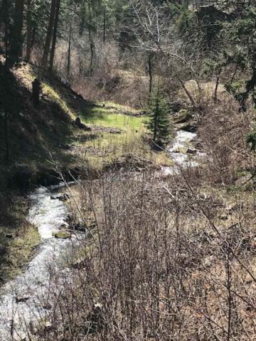 LOT 63 Spring Creek Road, Deadwood, SD 57732 (MLS #61292) :: Christians Team Real Estate, Inc.