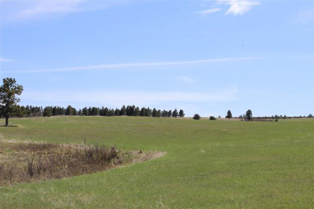 TBD Rifle Pit Road, Beulah, WY 82712 (MLS #61344) :: Christians Team Real Estate, Inc.